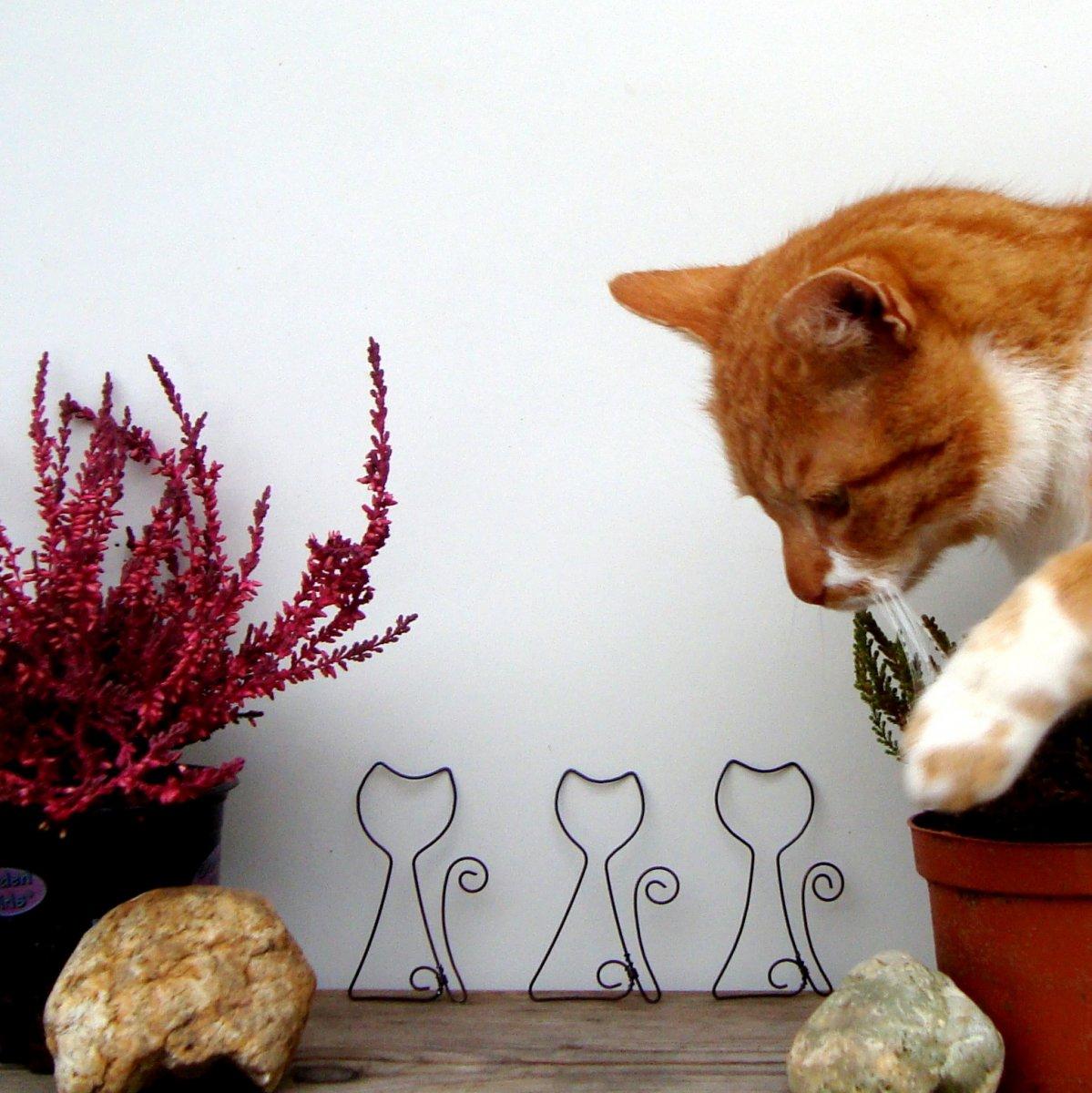 zdobené obrázky kočička ebenové krásky porno galerií